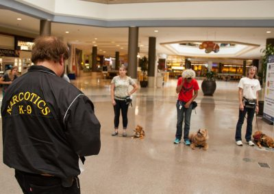 american-service-dog-at-mall-117