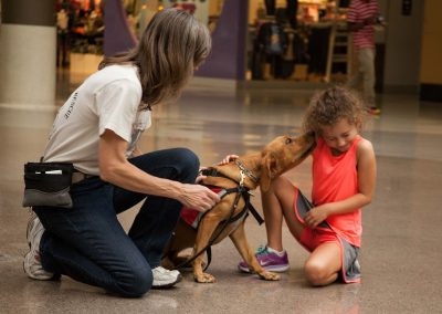 american-service-dog-at-mall-124