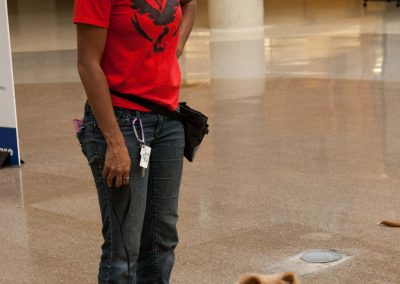 american-service-dog-at-mall-130