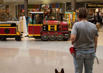 american-service-dog-at-mall-132