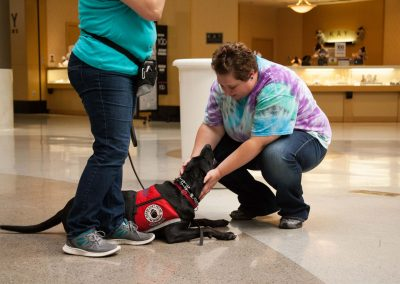 american-service-dog-at-mall-139