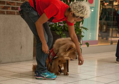 american-service-dog-at-mall-142