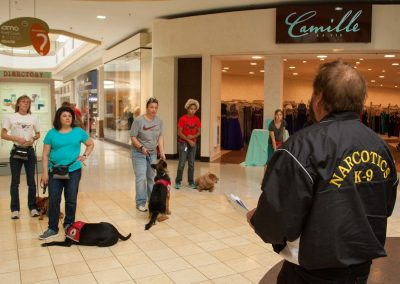 american-service-dog-at-mall-145