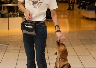 american-service-dog-at-mall-15