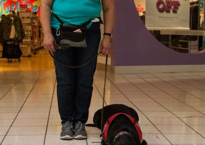 american-service-dog-at-mall-26