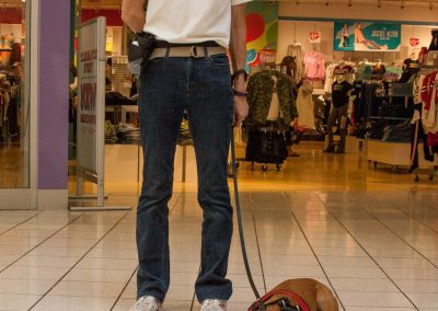 american-service-dog-at-mall-29