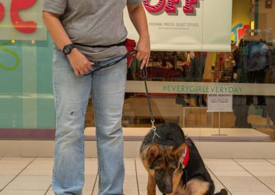 american-service-dog-at-mall-34