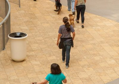 american-service-dog-at-mall-59
