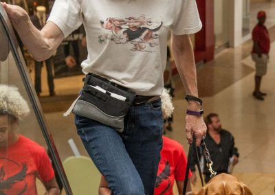 american-service-dog-at-mall-67