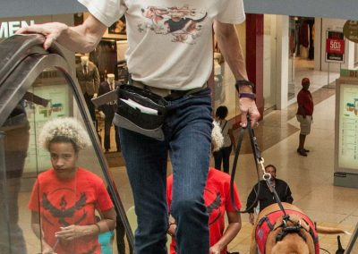 american-service-dog-at-mall-69