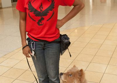 american-service-dog-at-mall-74