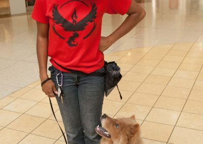 american-service-dog-at-mall-77