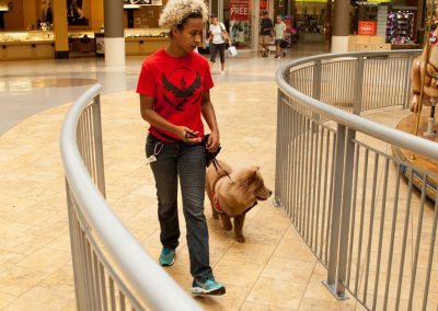 american-service-dog-at-mall-93