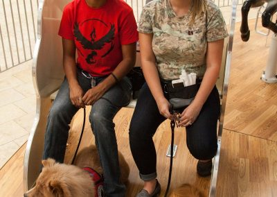 american-service-dog-at-mall-95